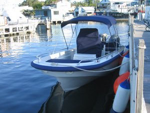 Boston Whaler - After